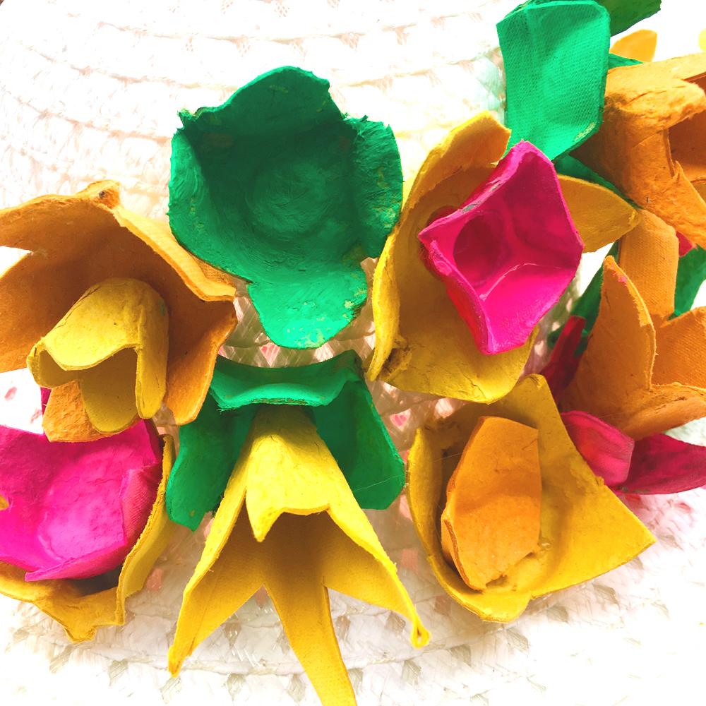 bonnetflowers